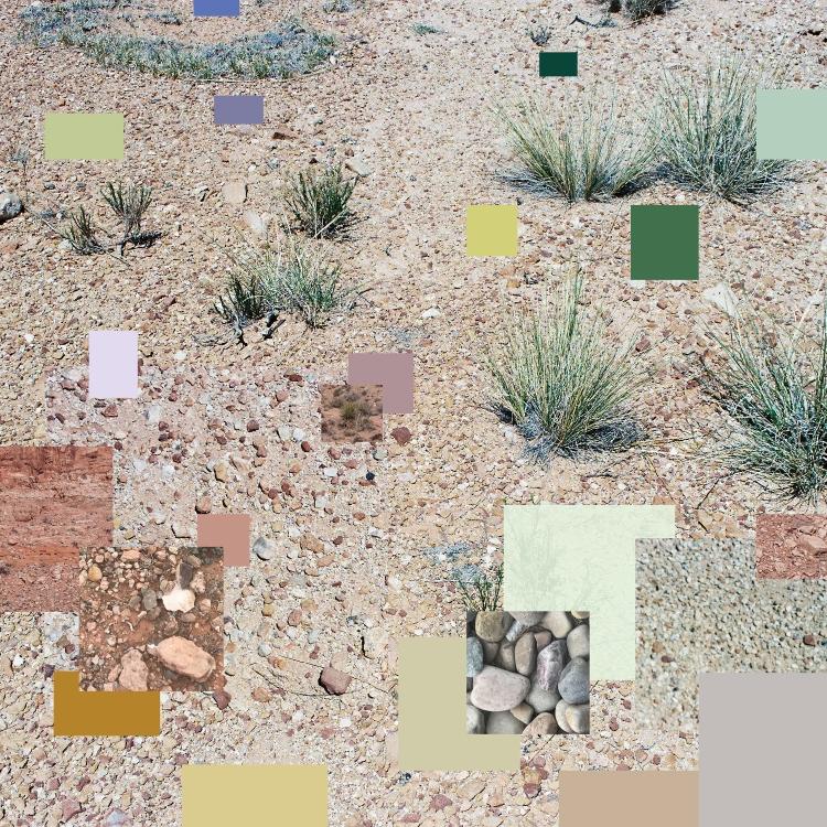 desert_swatch_1